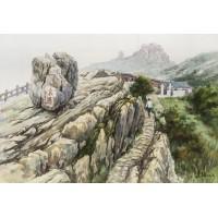 泰山瞻鲁石