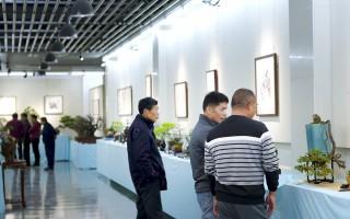 桑莲居 案上林泉——泉州盆景·赏石·书画迎春展今晨开幕