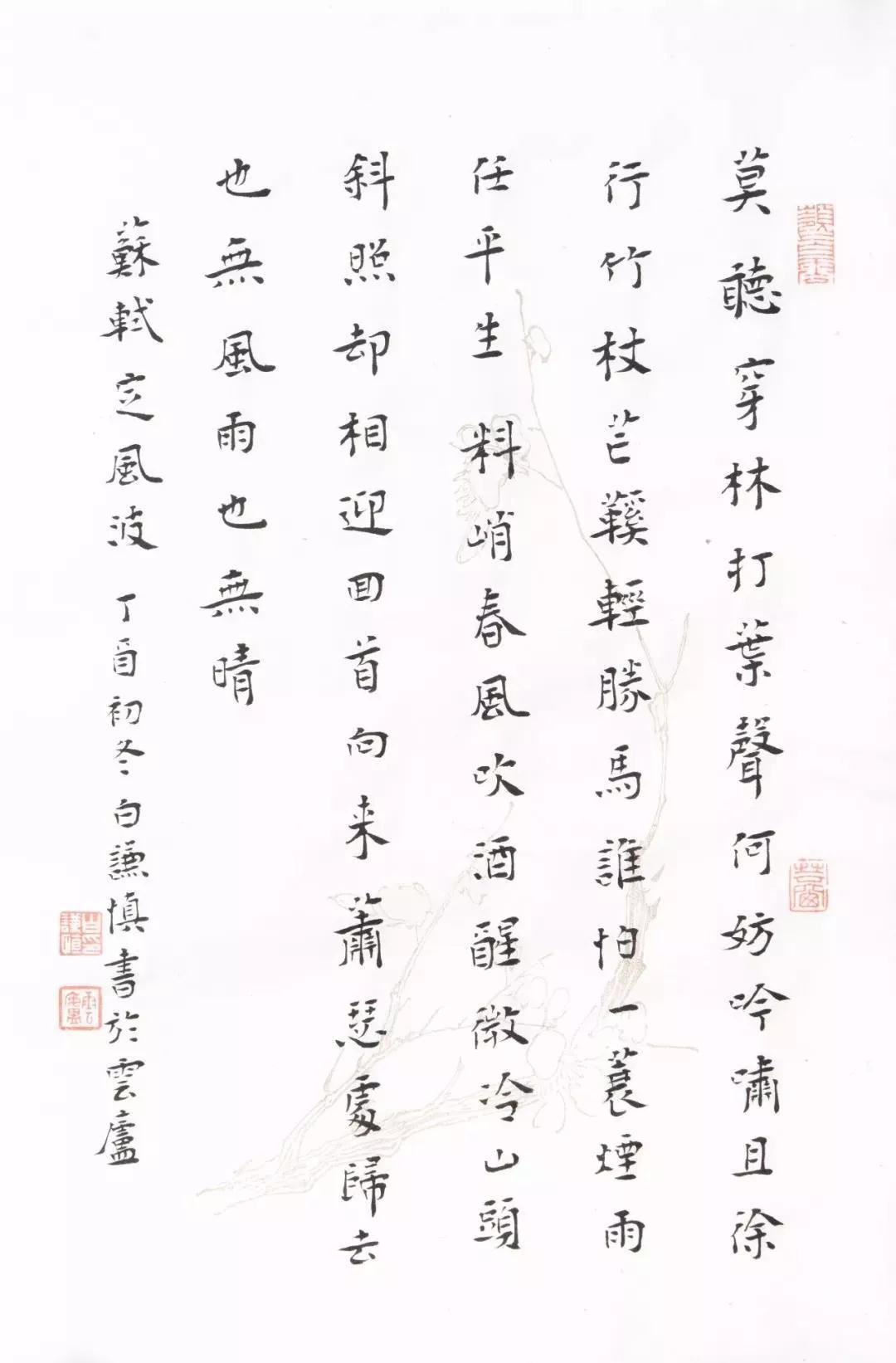 白谦慎 苏轼 定风坡  27x18cm 纸本 2017