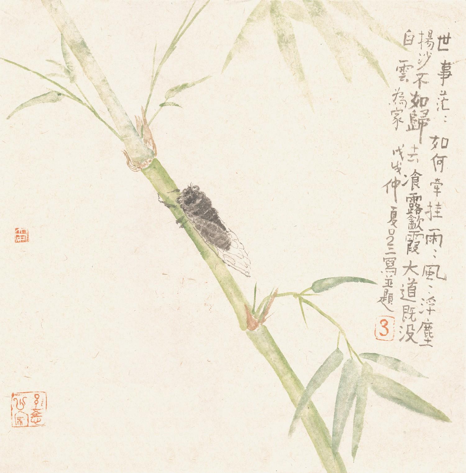 竹蝉(35cmX35cm)