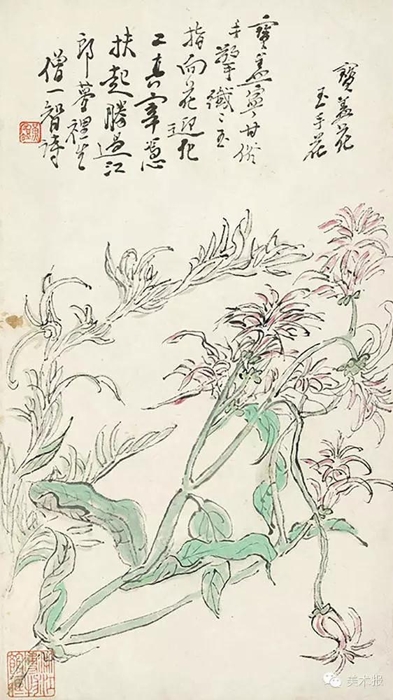 黄山野卉册1 (1) 副本.jpg