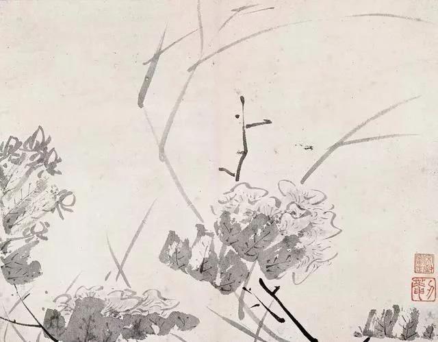 清 八大山人 传綮写生图之芙蓉 31.5cm×24.5cm 1659 台北故宫博物院藏