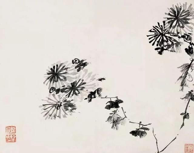 清 八大山人 传綮写生图之菊 31.5cm×24.5cm 1659 台北故宫博物院藏