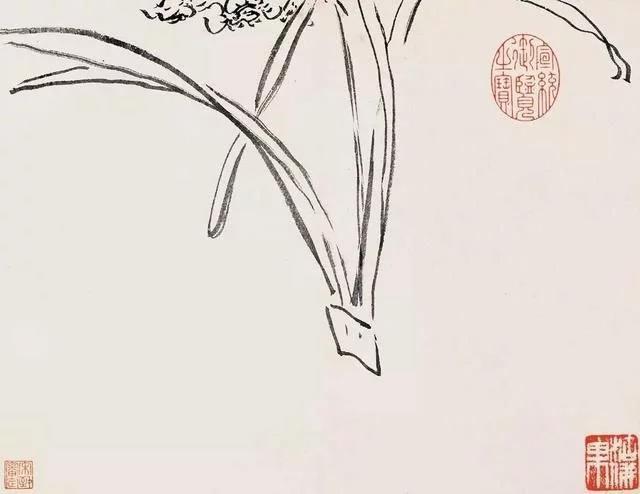 清 八大山人 传綮写生图之水仙 31.5cm×24.5cm 1659 台北故宫博物院藏