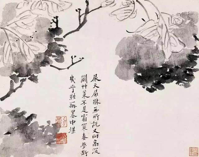 清 八大山人 传綮写生图之墨花 31.5cm×24.5cm 1659 台北故宫博